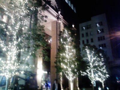 会社前の街路樹がイルミネーションされてた。携帯写真で伝わるかなぁ