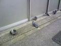 朝の通勤途中で見かけたハトさん達…。今日は昨日にも増して冷え込ん