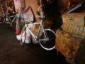 この自転車Janで見たなぁ