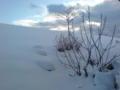 今日の新潟の雪と空はこんな感じ!(;^_^A