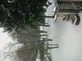 フランス留学してる友達からの写真。寒そう……!!!