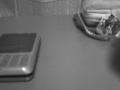 早くもデジタルハリネズミが届きました。ボタンがペコペコ言うなぁと