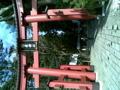 弥彦神社に参拝してきました。後の山がすごく立派。