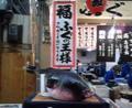 大阪に来ています。黒門市場はたくさんの活フグが!!こんなにたくさ