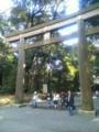 明治神宮なう。 参拝すませて代々木公園へ。
