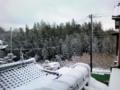 お正月の風景、全然センスないや…