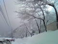 北陸某ゲレンデにて。すごい雪で視界ゼロ…現在待機中ー
