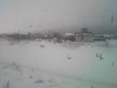 まるで北海道なんですが。在来線も徐行しているレベルの雪。関ヶ原、