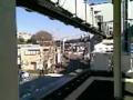 モノレールで江ノ島へ。駅が高いから足がすくんで怖いよ〜(@_@)