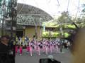阿波踊りの写真。