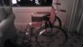 ついに車椅子