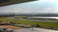 京都競馬場のお天気は晴れ。芝、ダートとも良馬場。本日も単 勝1番人