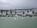 イカ釣り漁船の灯かり