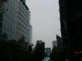 最近の、東京の良い天気が、ついにどこかに行っちゃった(≧ヘ≦)