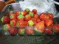 イチゴ〜これで200円