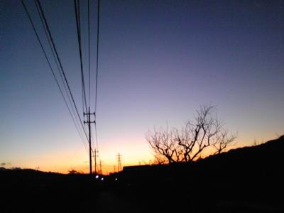 おはようございます。大晦日、山梨県北杜市の朝です。