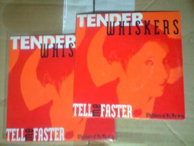 テンダーウィスカーズのダニジョンカバー聴きたくなって探してたら出