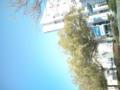今日の広島はアウター着てたら汗かくくらい暑い(`o´)