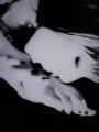 昨日発売のキムビアンカ処女CD、同梱DVD収録のPV「♀バージョン」がヤ