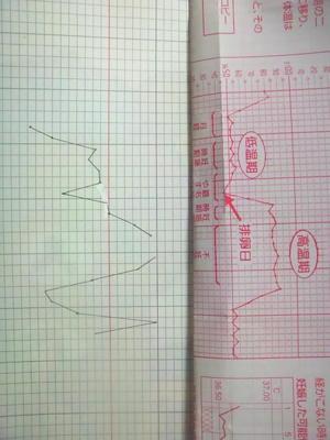 上のが模範図(?)  下のはわたしのグラフ