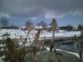 今日はシローズアングルで花見です 釣りもしてます、ツクシンボなう