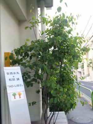 安西水丸さん和田誠さん二人のアドリブ展、南青山スペースYUIで明日ま