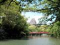 姫路城なう。コミュニケーション障害学会の昼休み中。平成の大改修だ