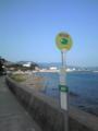 土庄町の鹿島方面は、チョット風は有りますが、海水浴日和となってマ