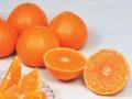 薄い果皮とぷるぷるの食感が・・「紅まどんな」【楽天】http://ow.ly/fU9CA