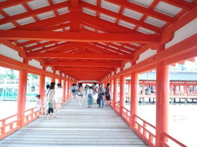 久しぶりに厳島神社へ。