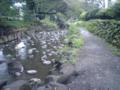 降雨の影響で濁っていますが、神田川上流は気持ちよく歩けます。周り