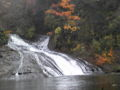 養老渓谷の滝きれい。
