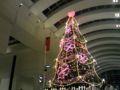 えっと、パンパシ前(?)のクリスマスツリーは、ピンクのハートでラ