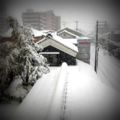 ブログ更新。雪の古町=「雪の降る街」? http://yaplog.jp/furumachi