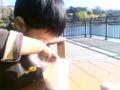 上野動物園で子守り中なう。