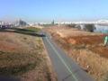 今日の扇大橋の風景。ランナーや自転車がたくさんいます。向かって上