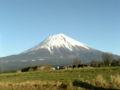 富士山でっかー