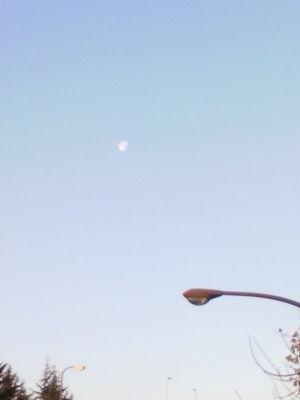 月、ここならサテライトキャノンがうてますね♪