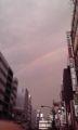 去年はよく虹みたな