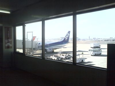福岡空港で乗り継ぎです。晴れで暖かい!