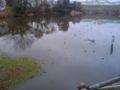 高砂の通称、蓮池またはバクダン池。昔はバスがスクールしてたんだけ