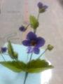 昨日 パンフラワー教室で作ったスミレの花です  世界でたったひとつの