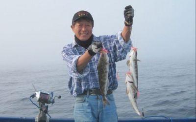 美味し北海道のホッケも一度の釣行でクーラー満タンの釧路〜