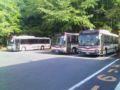京都バスのるよ〜