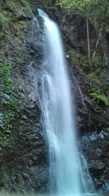 ちなみにゴールデンウィークは払沢の滝@奥多摩へいった。パワースポ