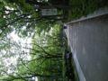 靫公園にて