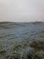 ひたち海浜公園。雨天少し残念。