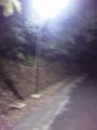 夜の散歩なう