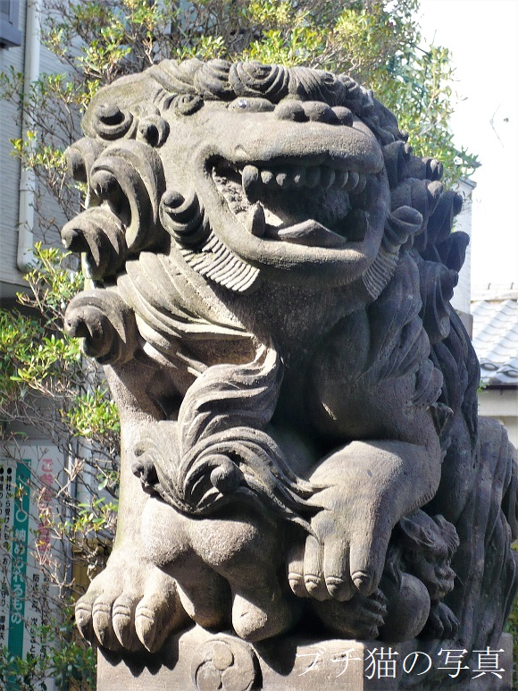 渋谷区穏田神社(おんでん)
