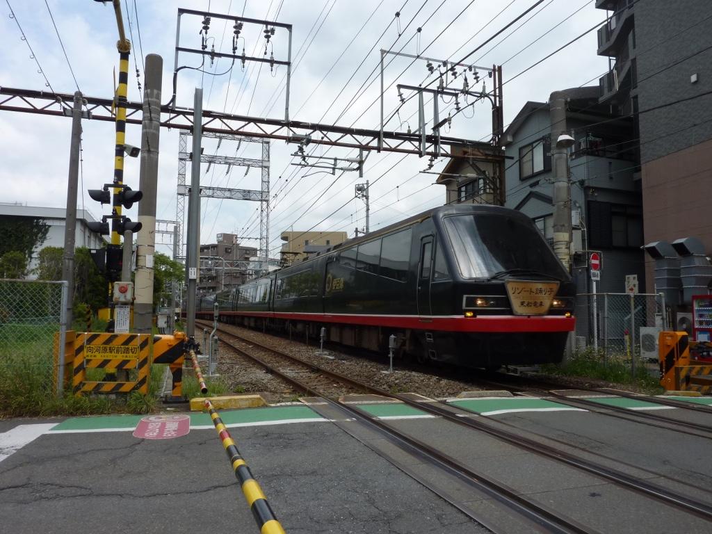 JR南武線向河原駅付近を通過する黒船電車、立川始発のリゾート踊り子91号(2010/5/16)
